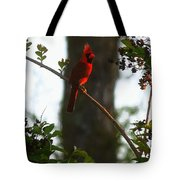 Cardinal In The Crepe Myrtle Tote Bag