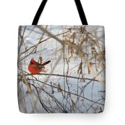 Cardinal In Winter 2 Tote Bag