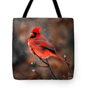 Cardinal On A Snowy Day Tote Bag