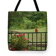 Cardinal On Fence Tote Bag