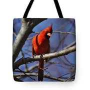 Cardinal On Watch Tote Bag