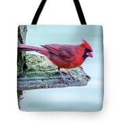 Cardinal Perched Tote Bag