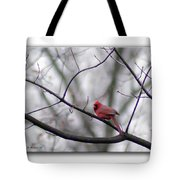 Cardinal Perched On A Branch Tote Bag