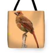 Cardinal Portrait Tote Bag