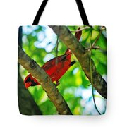 Cardinal Red Tote Bag