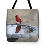 Cardinal Reflection Tote Bag