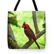 Cardinal Render Tote Bag