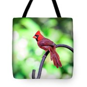 Cardinal Rule Tote Bag