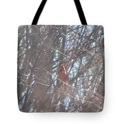 Cardinal Singing  Tote Bag