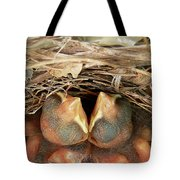 Cardinal Twins - Snugly Sleeping Tote Bag by Al Powell Photography USA
