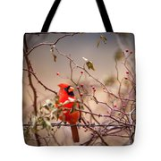 Cardinal With A Mouthful Of Hips Tote Bag