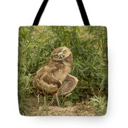 Care To Dance? Tote Bag