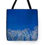 Carefree Fountain Tote Bag