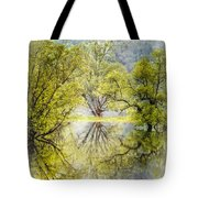 Caress In The Mist Tote Bag
