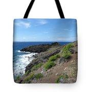 Caribbean Coastal Path Tote Bag