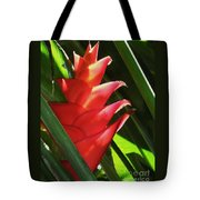 Caribbean Color Tote Bag