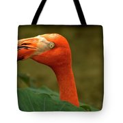 Caribbean Flamingo Tote Bag