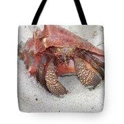 Caribbean Hermit Crab Tote Bag