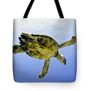 Caribbean Sea Turtle Tote Bag