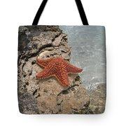 Caribbean Starfish Tote Bag