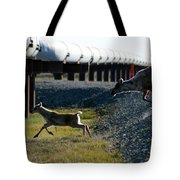 Caribou Cow And Fawn Tote Bag