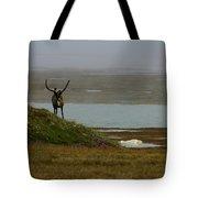 Caribou Fog Tote Bag