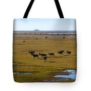 Caribou Herd Tote Bag