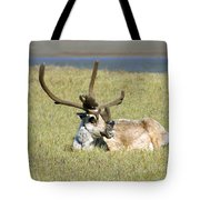 Caribou Rest Tote Bag