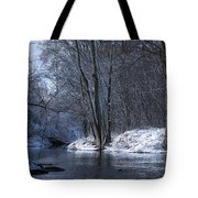 Carleton Place On The Mississippi - 125 Tote Bag