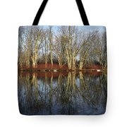 Carleton Place On The Mississippi - 38 Tote Bag