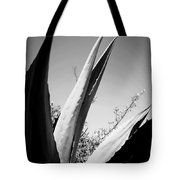 Carmel Mission Agave In B And W Tote Bag