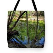 Carmel River At Gilmore Ranch Tote Bag