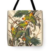 Carolina Parrot Tote Bag