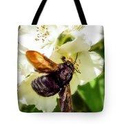 Carpenter Bee Tote Bag