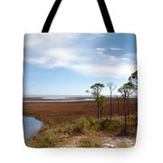 Carrabelle Salt Marshes Tote Bag