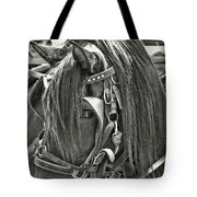 Carriage Horse Beauty Tote Bag