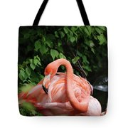 Carribean Flamingo Bird Ruffling His Feathers Tote Bag