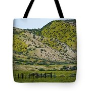 Carrizo Plain Daisy Hills Tote Bag