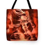 Carved Canyon Wals Tote Bag