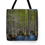 Carvers Cypress Tote Bag