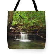 Cascade Happy Trail Tote Bag