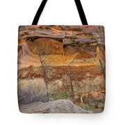 Cascade Of Glowing Sandstone Tote Bag