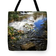 Cascade Springs With Rock Tote Bag