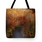 Cascade Valley Afternoon Tote Bag