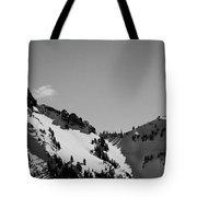 Cascades 2 Tote Bag