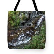Cascadilla Falls Creek Gorge Trail Giant's Staircase Tote Bag