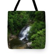 Cascadilla Waterfalls Cornell University Ithaca New York 02 Tote Bag