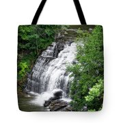 Cascadilla Waterfalls Cornell University Ithaca New York 03 Tote Bag