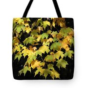 Cascading Leaves Tote Bag