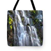 Cascading Springs Snake River Canyon Tote Bag
